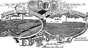 Logo Briggs