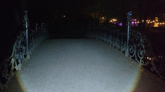 Most w Parku Południowym