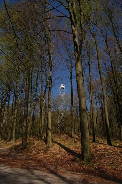 Wieża na Bukowcu